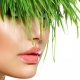 "A lady with grass hair with text ""5 ways to get your salon into the green scene."" by Neko Salon Software."