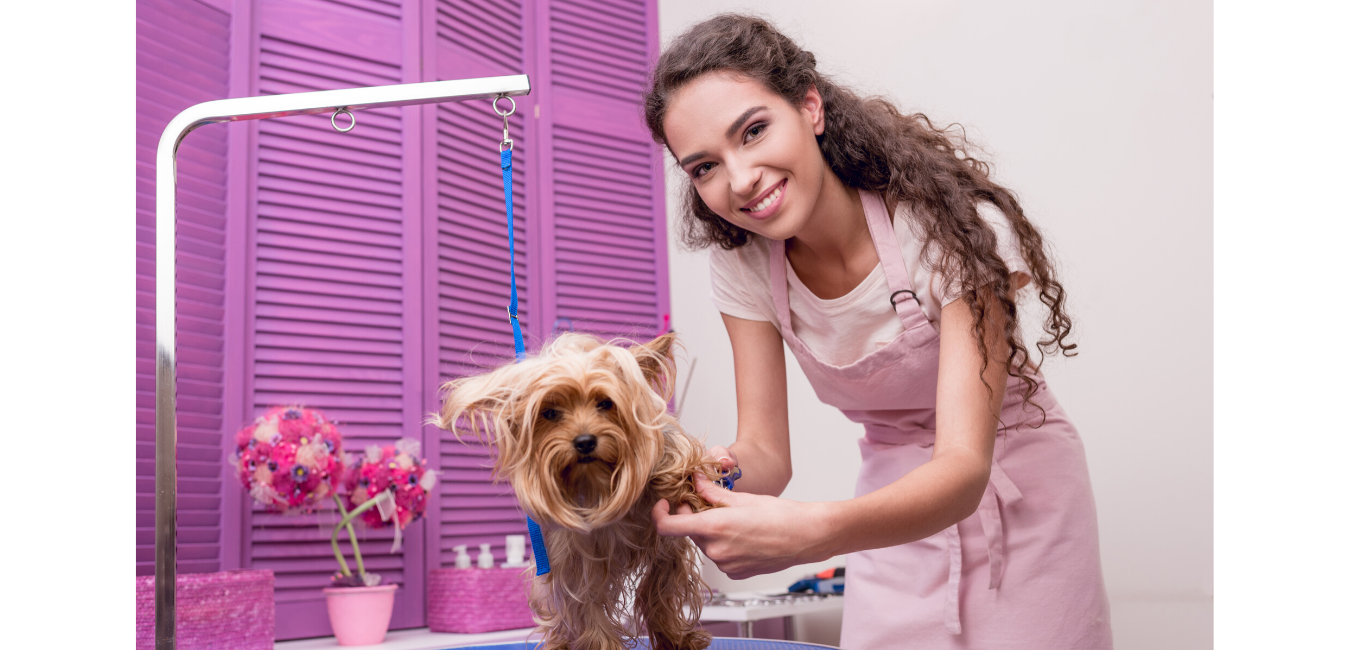 A pet groomer and her groomed dog